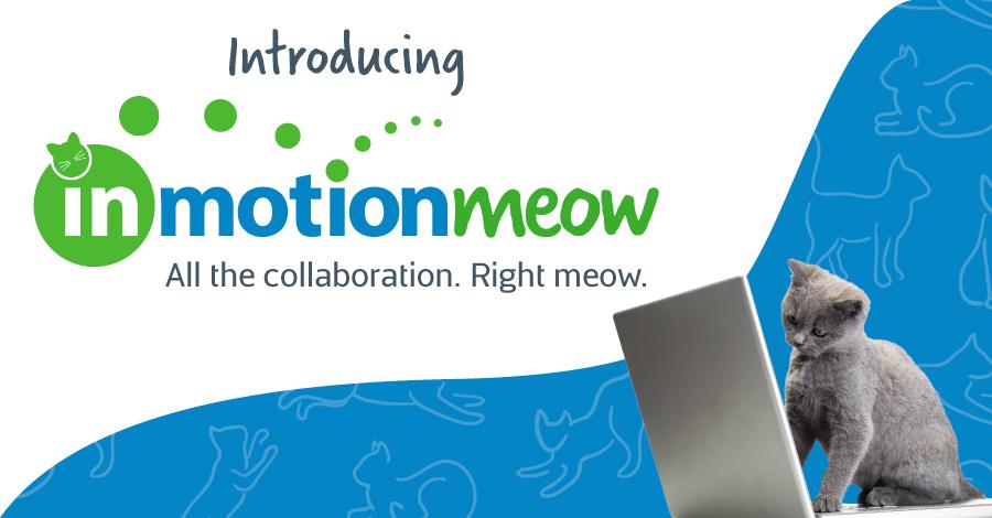 inMotionMeow